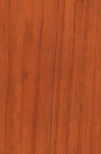 Resultado de imagen para madera cedro